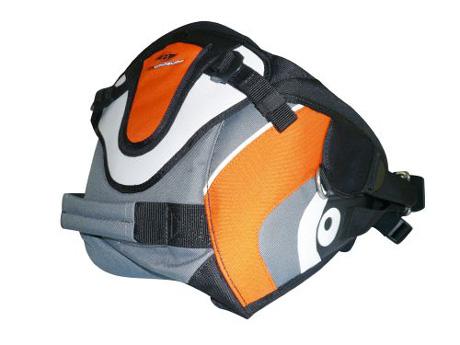 Bic seat harness