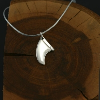 Silver fin medal